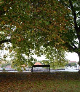 Parken rundt Gamlebyen Fredrikstad